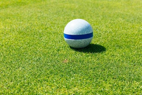 Kostenloses Stock Foto zu ball, golf, golfball, golfclub