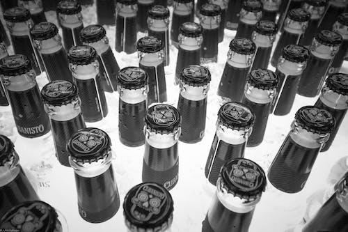 Imagine de stoc gratuită din alb-negru, bere, sticlă de bere
