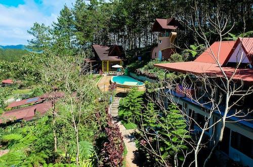 Immagine gratuita di acqua, alberi, architettura, colore