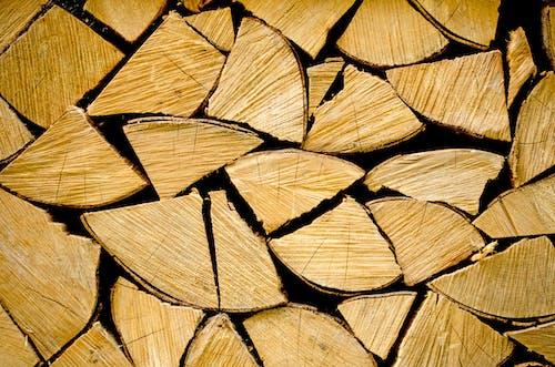 คลังภาพถ่ายฟรี ของ brennholz, energie, hintergrund, holzstapel