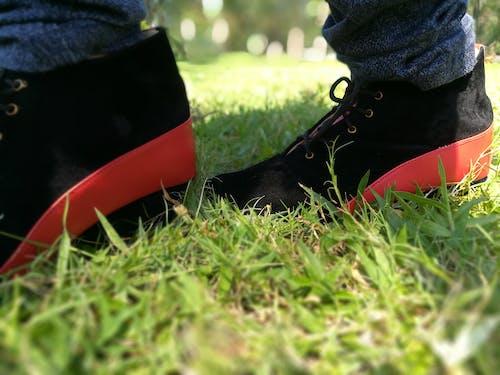 Foto stok gratis bakat, berjalan, berlari di rumput, foto