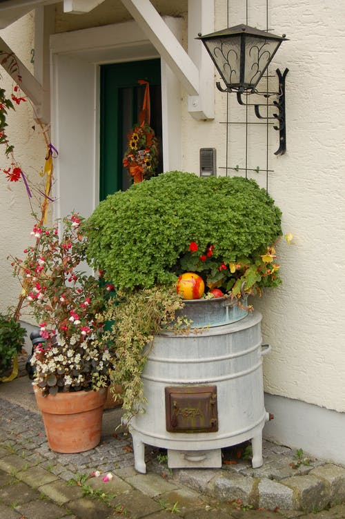 Streets flower pots with green plants and flowers