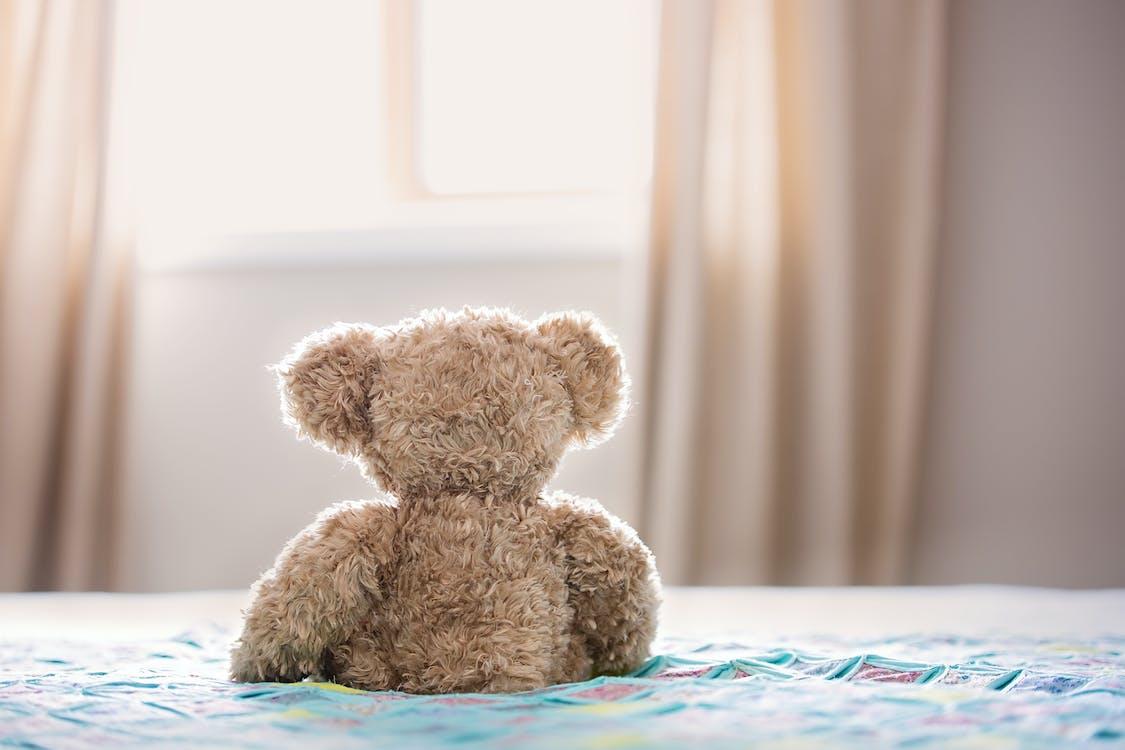 Braunbär Plüschtier Auf Dem Bett