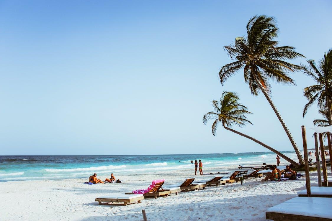 bølger, dagtid, feriested