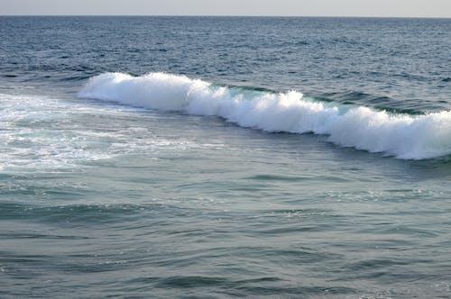 Fotobanka sbezplatnými fotkami na tému kývať, mávať, more
