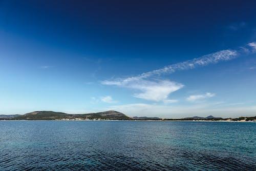 Бесплатное стоковое фото с Африка, дикая природа, на открытом воздухе, небо