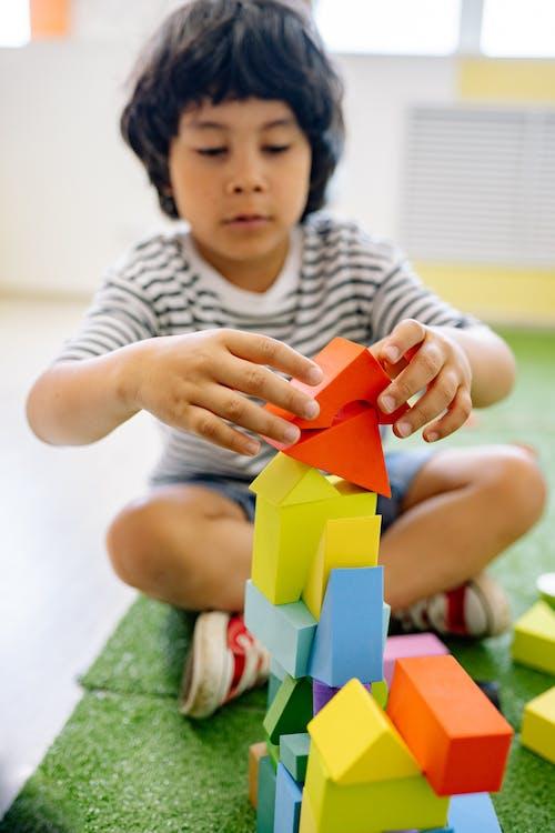 Gratis stockfoto met aan het leren, binnen, binnenshuis