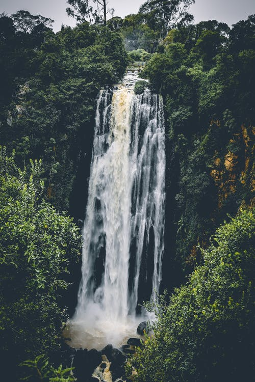 Waterfall Between Trees