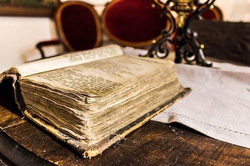 Imagine de stoc gratuită din antichitate, carte veche, citi, concentrare