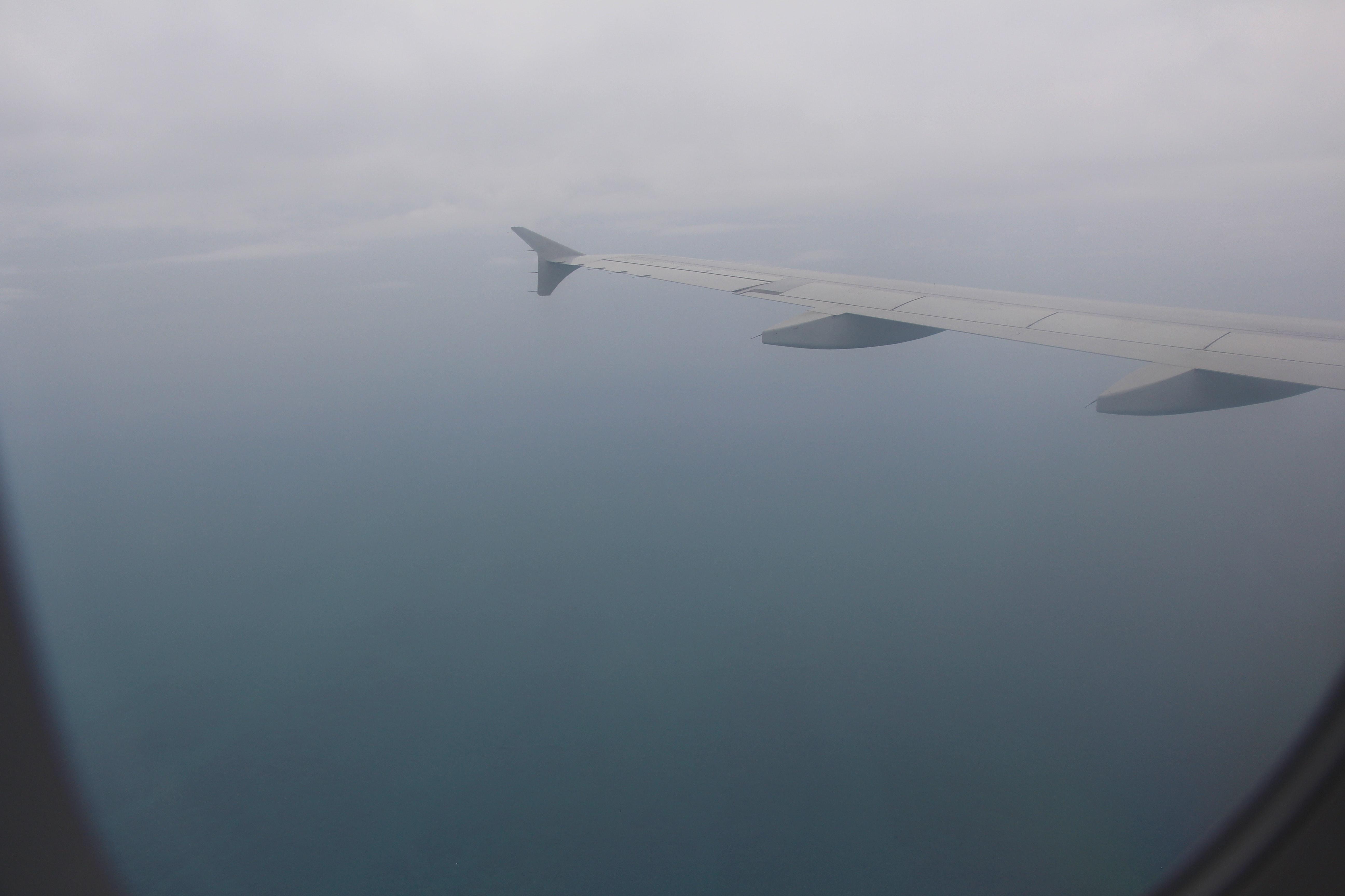 Free stock photo of aircraft, aircraft window, aircraft wing
