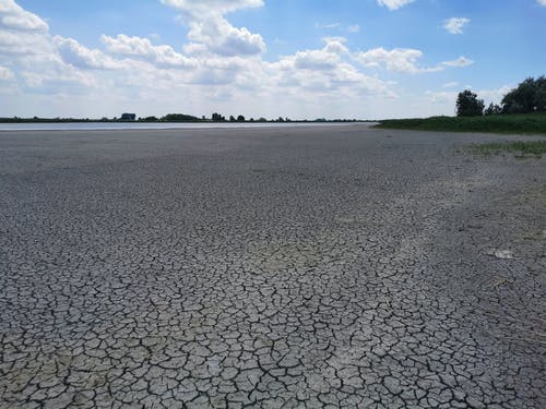 Free stock photo of cracks, drought, dry