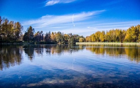 Kostenloses Stock Foto zu natur, himmel, wasser, bäume
