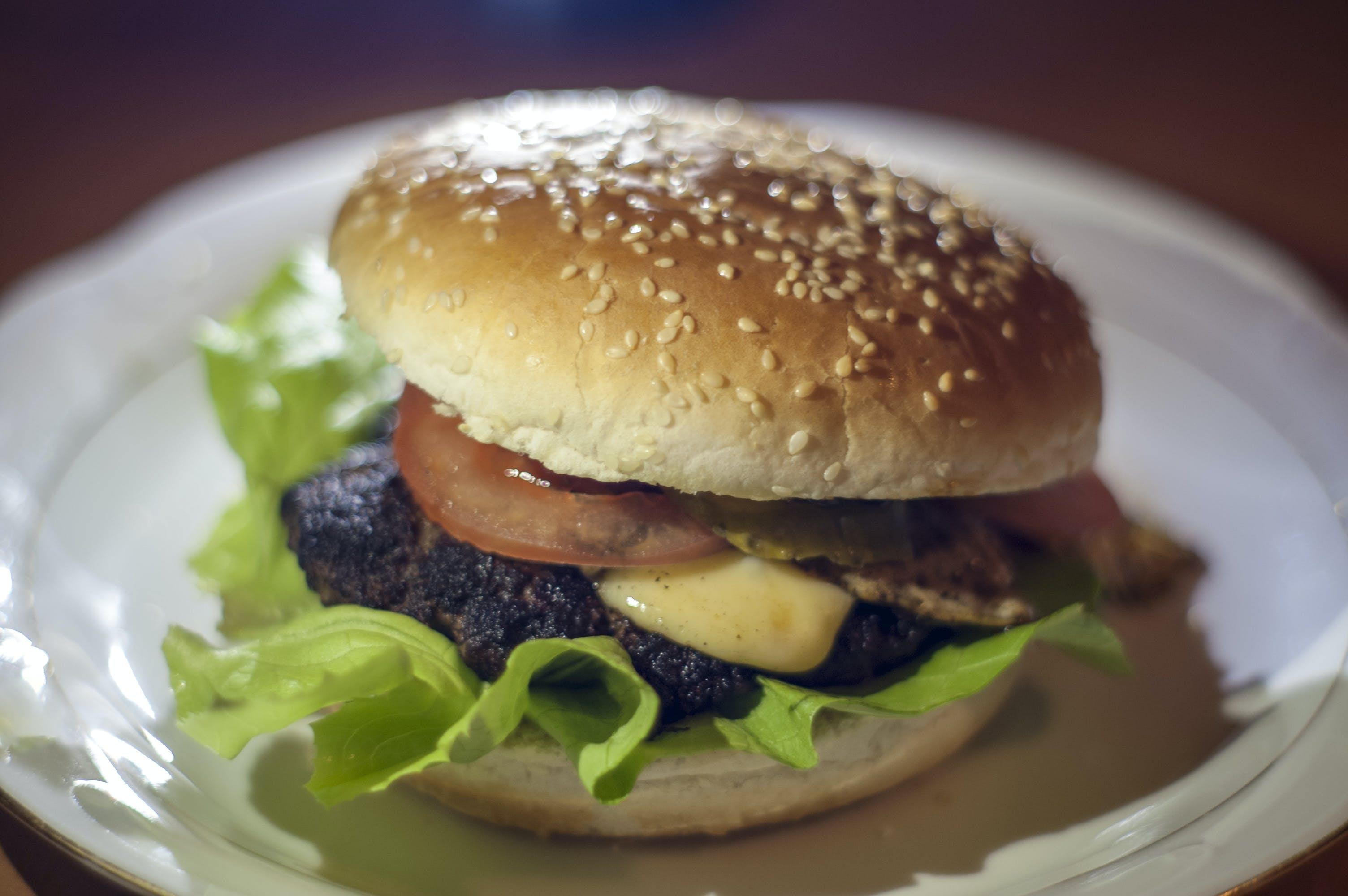 Free stock photo of dinner, homemade, burger
