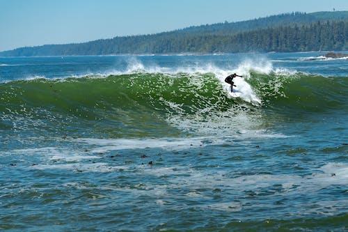Foto stok gratis bc, berselancar, Kanada