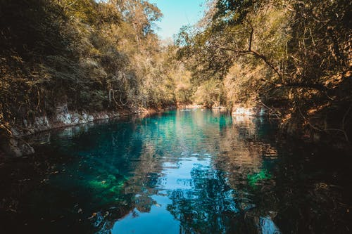 大自然, 自然小徑, 自然攝影, 自然桌面 的 免費圖庫相片