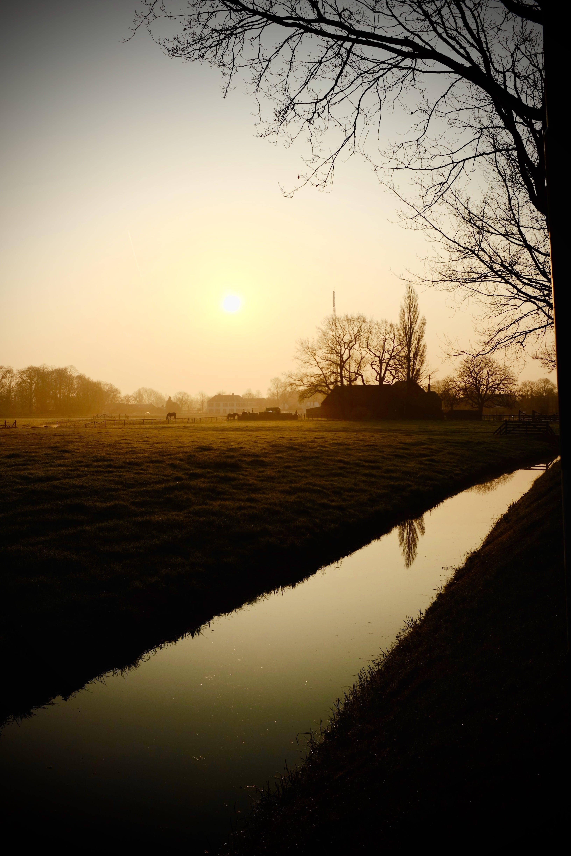 Free stock photo of nature, sunset, field, sunrise