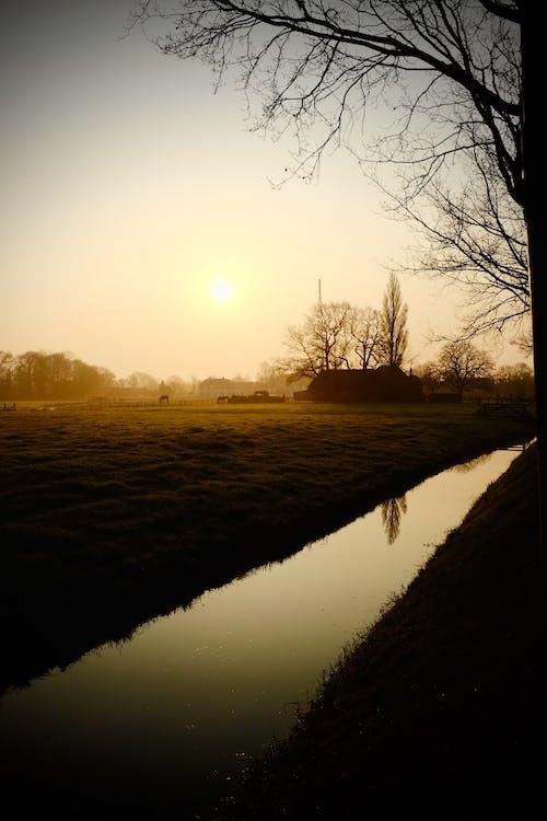 天性, 日出, 日落, 田 的 免費圖庫相片