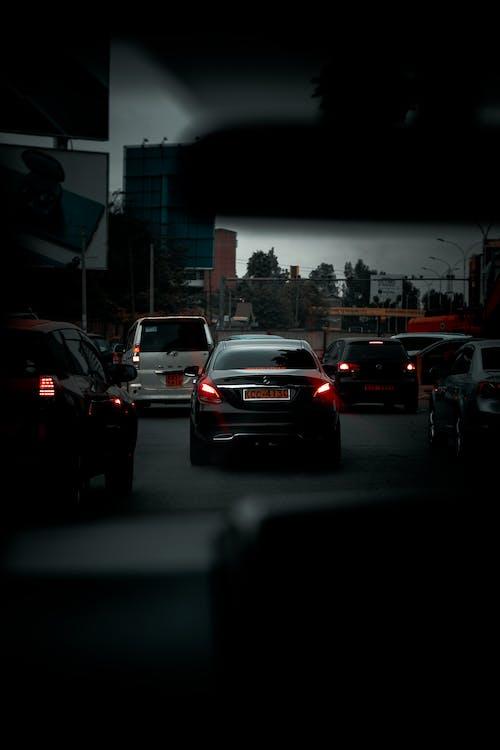 Základová fotografie zdarma na téma akce, auto, automobilové závody
