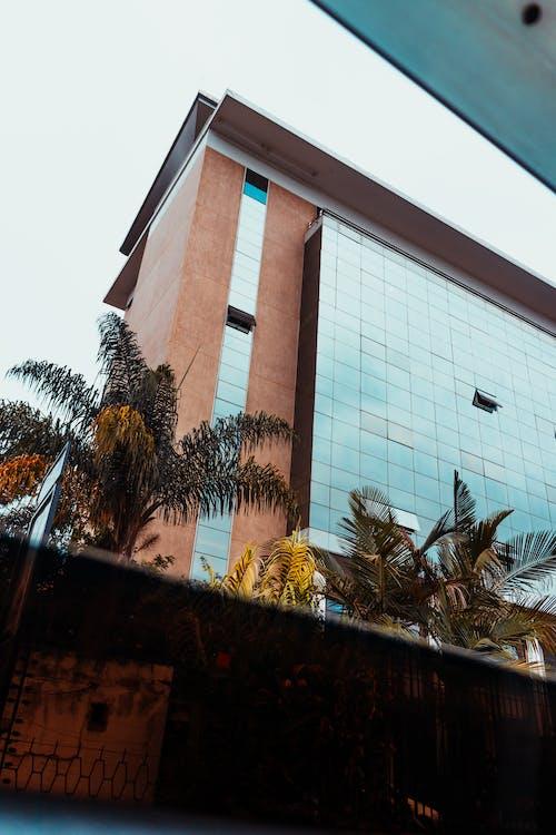 Základová fotografie zdarma na téma architektonická budova, budovy, Keňa