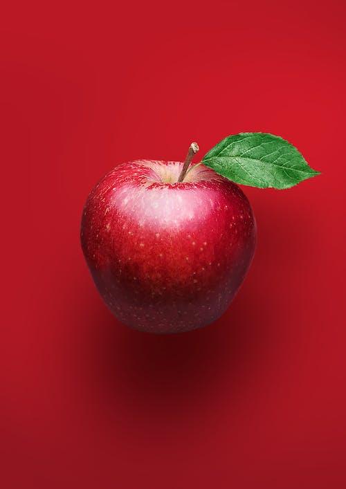 Gratis stockfoto met afzonderlijk, appel, apple