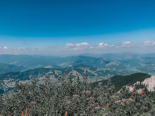 丘, 冬, 夏の無料の写真素材