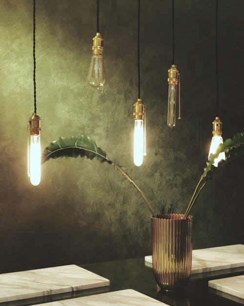 Green Leaves in Glass Vase Under Clear Bulb Pendant Lamps