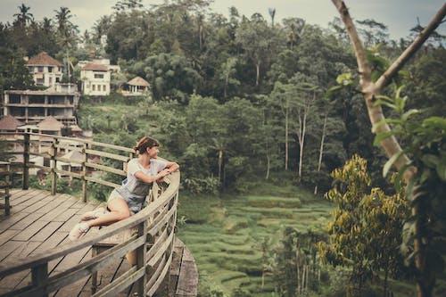 Бесплатное стоковое фото с девочка, деревья, досуг, женщина