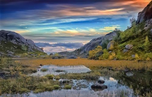 Foto profissional grátis de cores de outono, cores do outono