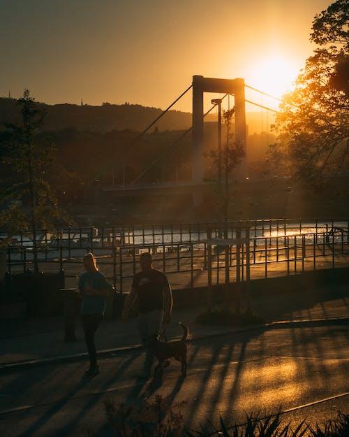 Man and Woman Walking on Bridge during Sunset