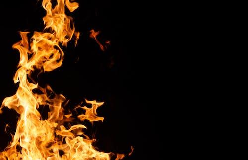 Foto profissional grátis de chama, flama, fogo