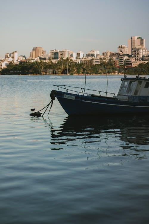 Foto stok gratis air, cairan, danau