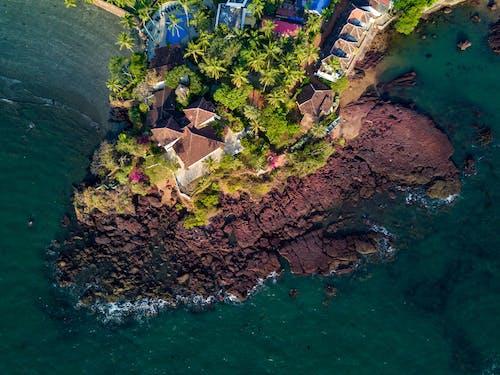 Foto profissional grátis de água, árvores, beira-mar, casas