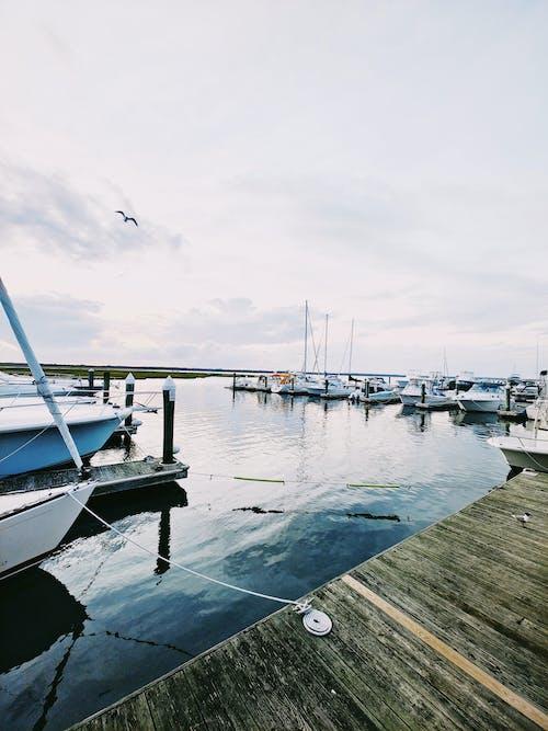 Darmowe zdjęcie z galerii z jacht, jezioro, krajobraz