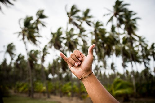 Selective Focus of Person's Hand Doing Yolo SIgn