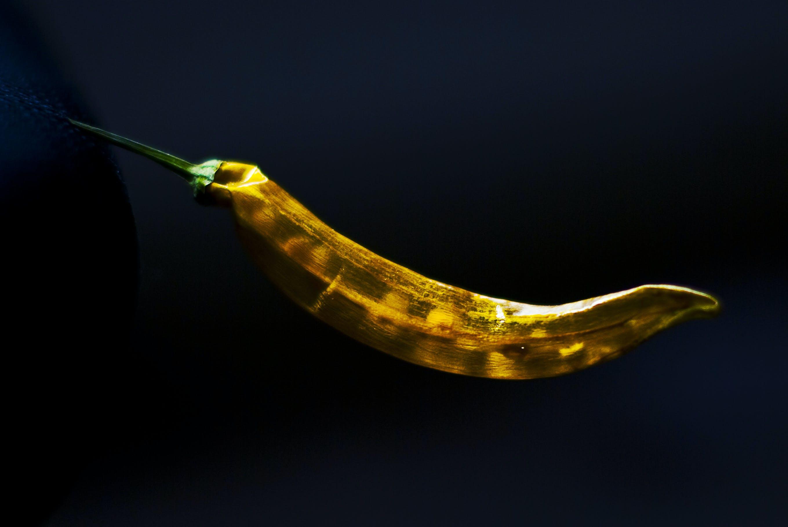 Free stock photo of dry, yellow, transparent, chilli
