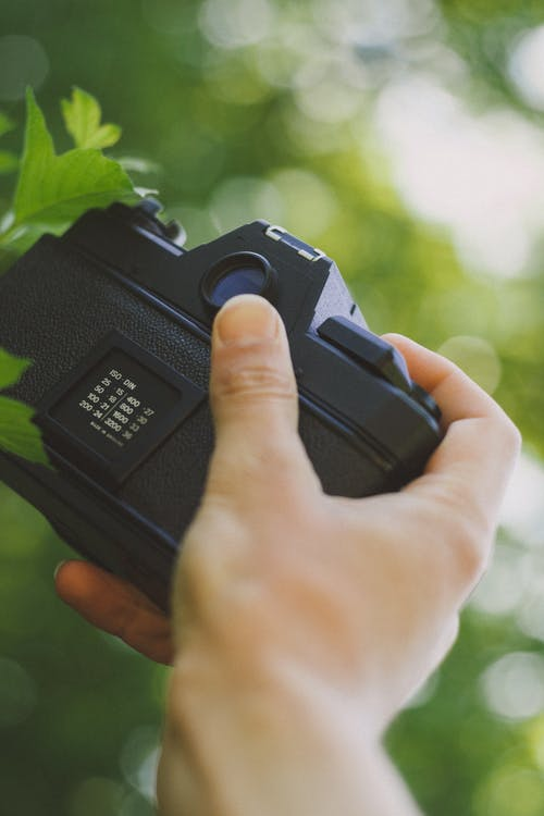 Black Camera on Persons Hand