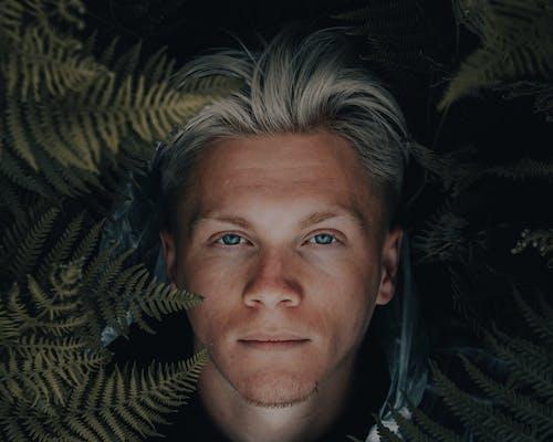 Free stock photo of actor, adult, eye