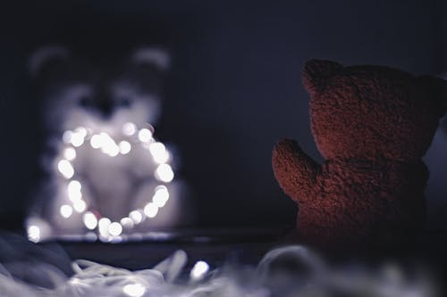 Free stock photo of brown teddy bear, close up, dark, fairy lights