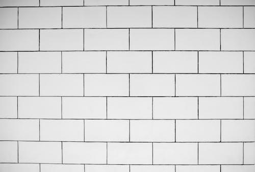 Immagine gratuita di bianco, colpo del primo piano, monocromatico
