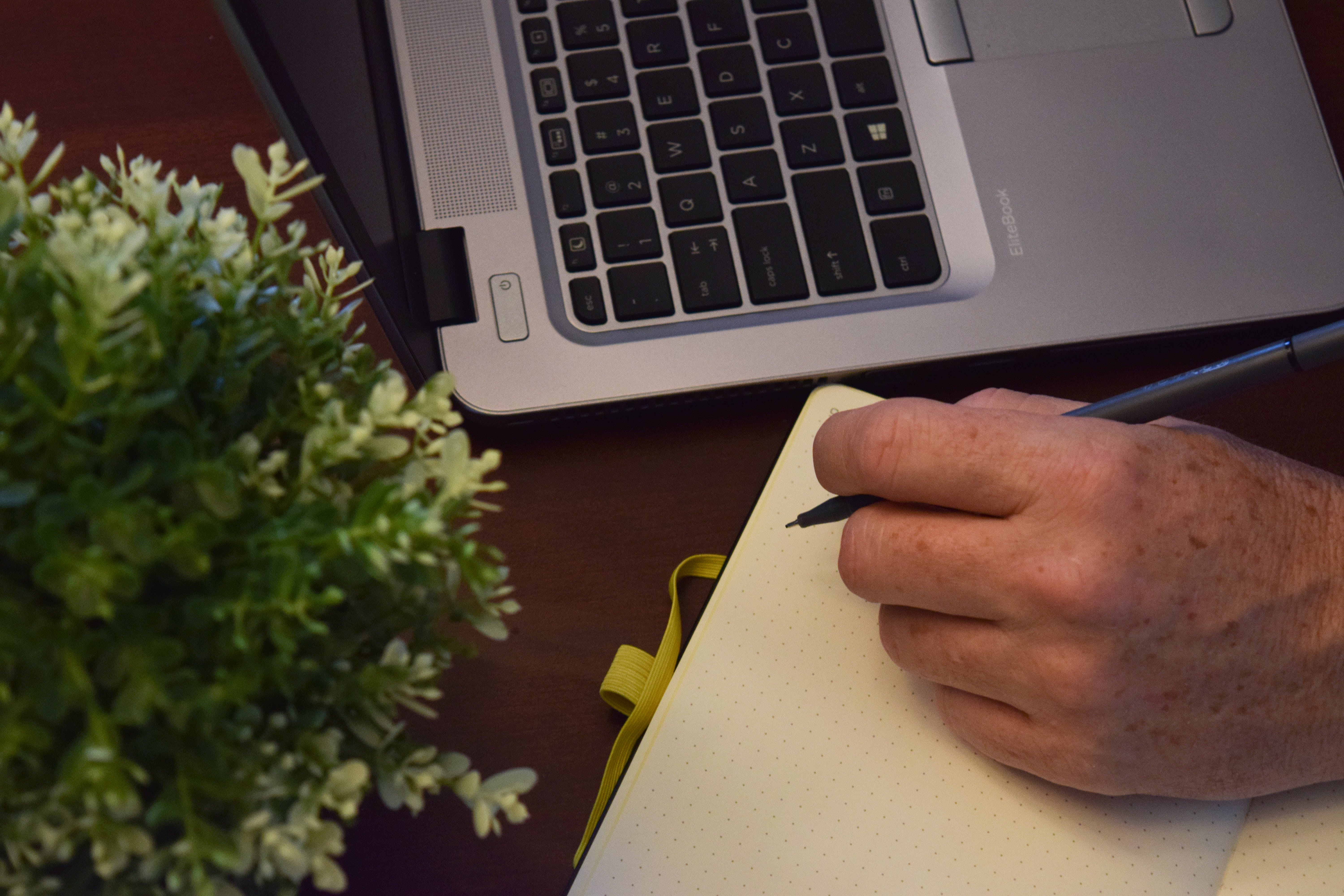 Free stock photo of computer, male, plant, work