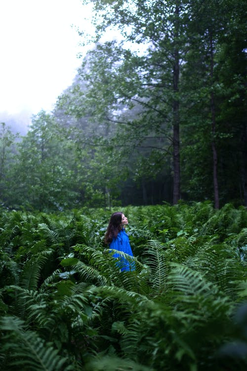 Woman in Blue and Green Dress Walking on Green Plants