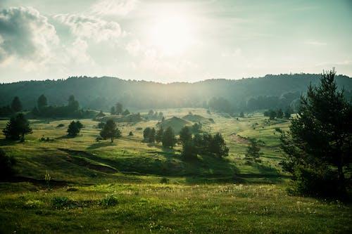 Foto stok gratis bukit, Fajar, gunung