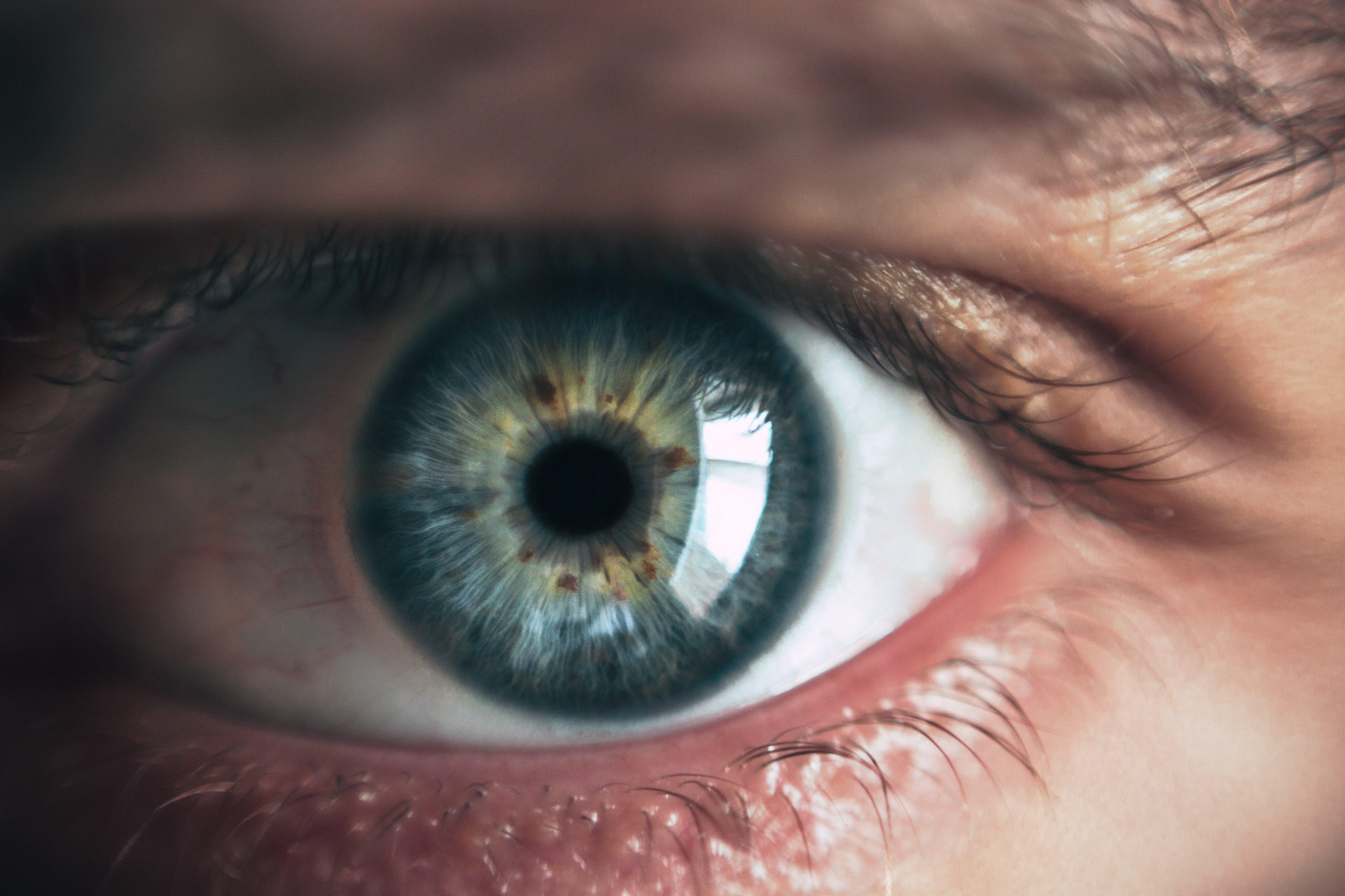 Immagine gratuita di adulto, azzurro, bulbo oculare, chiudere