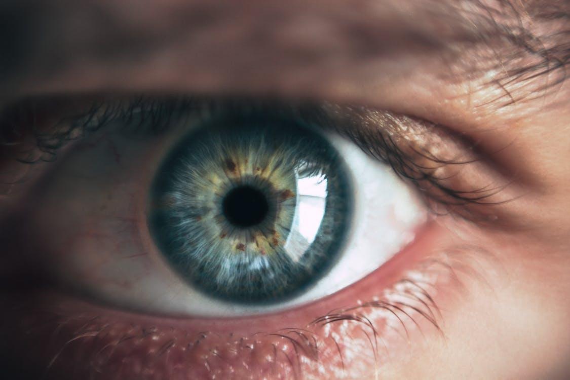åbent øje, blå, blå øjne