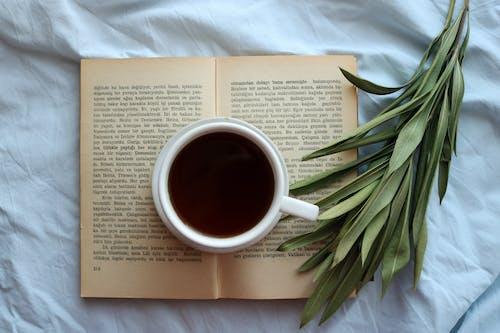 Ảnh lưu trữ miễn phí về cafein, màn hình phẳng, mở sách