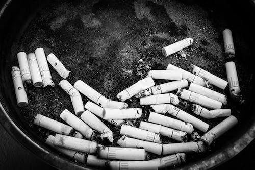 คลังภาพถ่ายฟรี ของ ขาว, ขาวดำ, ดำ, บุหรี่