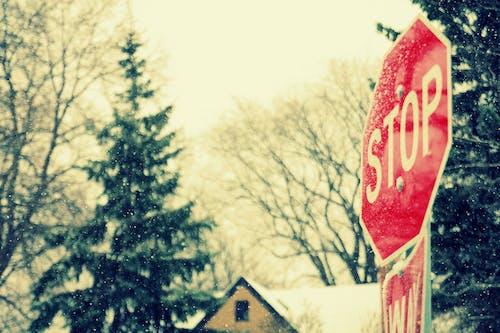 Gratis lagerfoto af by, skilt, sne, Stop