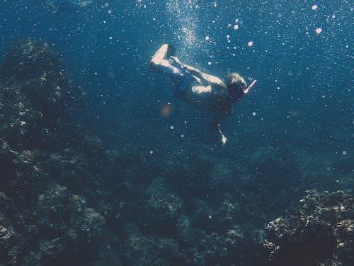 Fotos de stock gratuitas de arrecife, azul, bajo el agua, costa napali