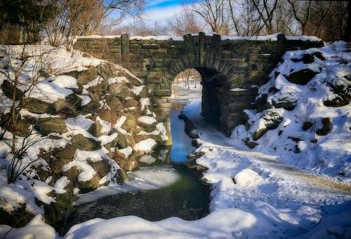 คลังภาพถ่ายฟรี ของ ธรรมชาติ, นิวยอร์กซิตี้, ภูมิทัศน์ฤดูหนาว, วอลล์เปเปอร์เมืองนิวยอร์ก