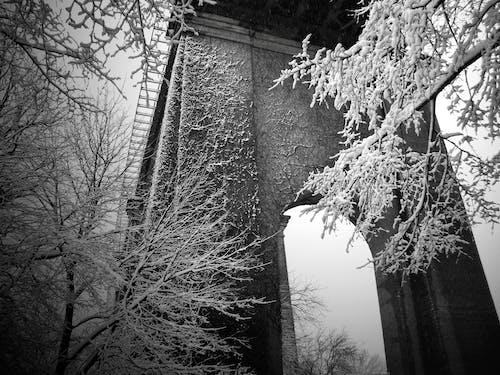คลังภาพถ่ายฟรี ของ นิวยอร์กซิตี้, ฤดูหนาว, วอลล์เปเปอร์เมืองนิวยอร์ก, หิมะ